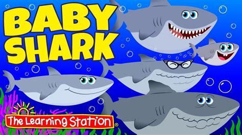 baby shark   popular childrens camp  animal song