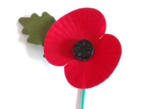 remberance poppy as the 11th hour of the 11th day of the 11th month dawns i say thank you on armistice day