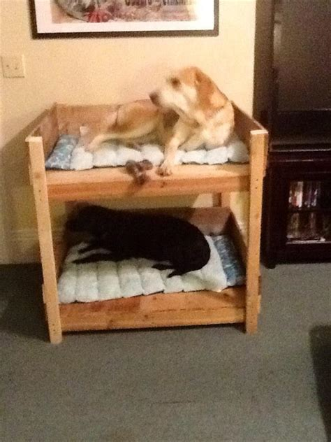 diy pet bunk bed plans  build dog bed pallet