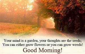 Good Morning thoughts images for friends | greetings ...