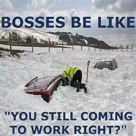 Funny Boss Memes - bosses be like
