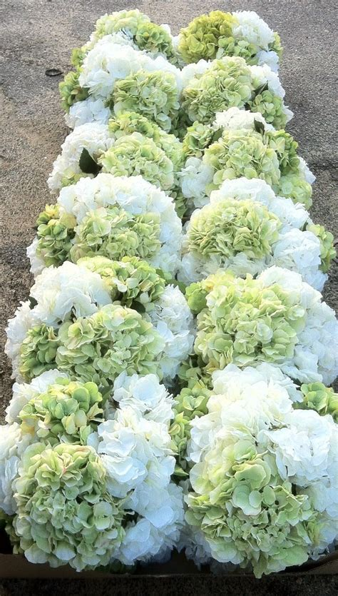 17 Best Ideas About Hydrangea Centerpieces On Pinterest