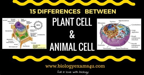 Multiple Choice Questions Biology Exams 4 U  Autos Post
