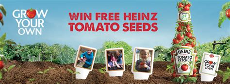 Heinz gives away tomato seeds to inspire home gardening in ...