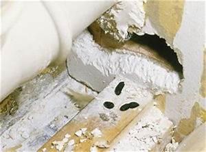 Ratten Im Kompost : 10 tipps zum vorbeugen ratten fernhalten know how ~ Lizthompson.info Haus und Dekorationen