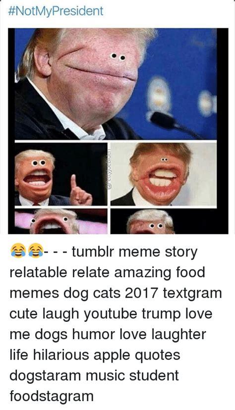 Tumblr Memes 2018 - notmy president tumblr meme story relatable relate amazing food memes dog cats 2017