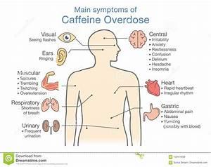 Main Symptoms Of Caffeine Overdose  Stock Vector