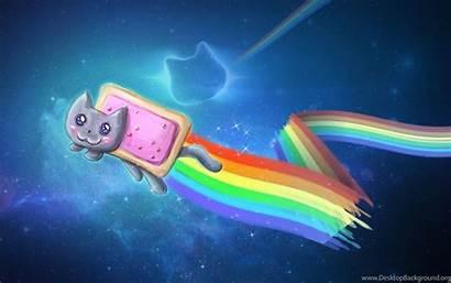 Cat Nyan Meme Wallpapers Desktop