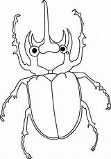 Beetle Coloring Pages Amazing Animals Sheet Chan Bailey Tocolor Clan Place Sheets Template Results Templates Button Using sketch template