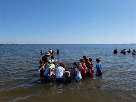 brevard charter school participates indian river lagoon quest