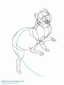 How To Draw An Arctic Fox U2019 Last Of The Polar Bears