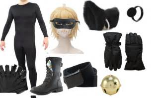Miraculous Ladybug Costumes and Cat Noir