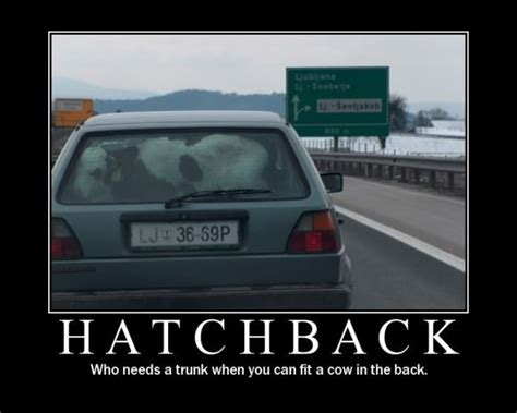 top    hatchback cars  uae uae yallamotor