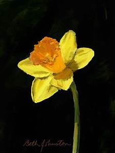 Daffodil Painting by Beth Johnston