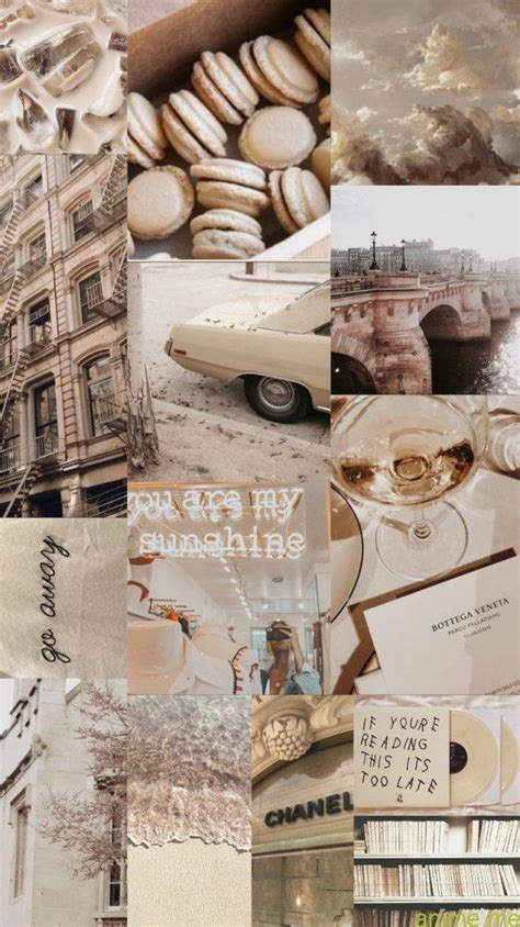 wallpaper background collage aesthetic  shade