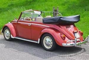 Vw Käfer Cabrio Oldtimer : oldtimer vw k fer cabrio 1300 von 1966 mieten 0824 ~ Kayakingforconservation.com Haus und Dekorationen