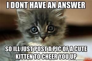 Cheer Up Kitten Meme   www.pixshark.com - Images Galleries ...