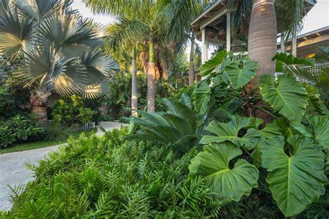courtyard home designs design a tropical garden hgtv