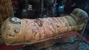 Cleopatra Vii Mummy   www.imgkid.com - The Image Kid Has It!