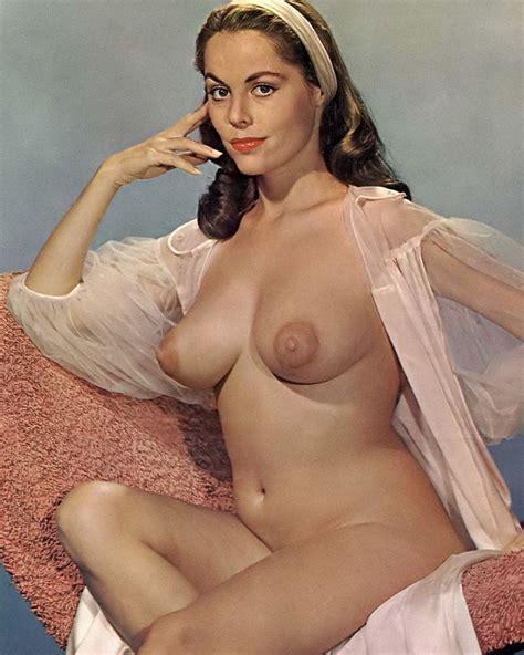 X S S Mega Star Diane Webber Big Beautiful Breasts Nudes Ebay