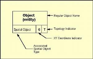 The Entity Internal Structure Download Scientific Diagram