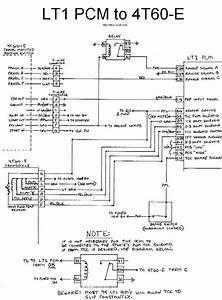 Be30d Lt1 Swap Alt Wiring Diagram
