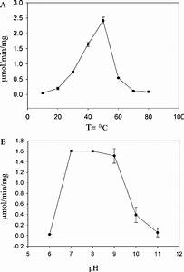 Effect Of Ph And Temperature On Enzyme Activity The