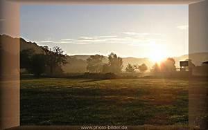 Landschaftsbilder Sonnenaufgang Nebel Ber Der Wiese