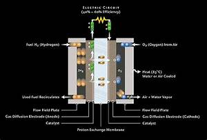 Fuel Cell Diagram  Separating Hydrogen From Oxygen For