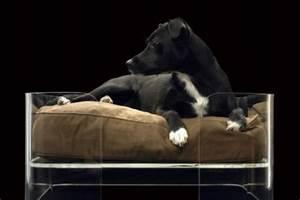 Panier Chien Design : panier design chien ~ Teatrodelosmanantiales.com Idées de Décoration
