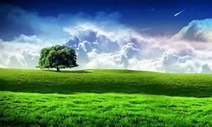Fondos Naturaleza — Cuadros