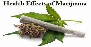 research paper about marijuana pdf research paper about marijuana pdf research paper about marijuana pdf