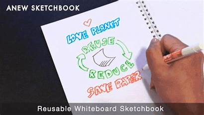 Whiteboard Dry Erase Markers Expo Fine Reusable
