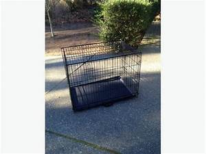 medium sized folding dog crate nanoose bay parksville With medium size dog crate