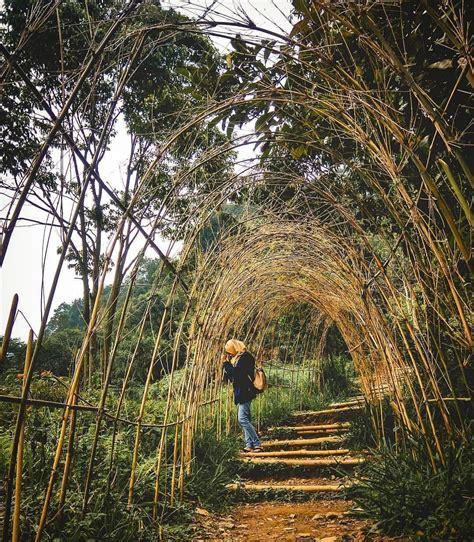 yuk intip  spot wisata alam  bogor  instagramable