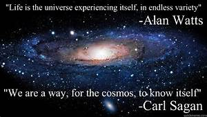 """""""Life is the universe experiencing itself, in endless ..."""