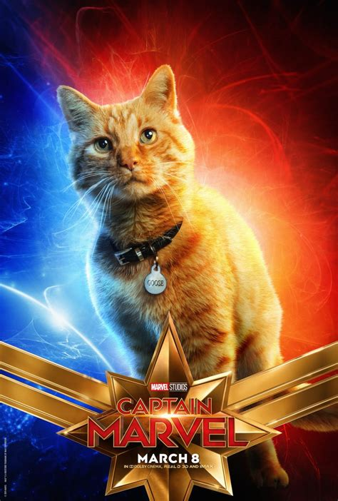love   captain marvel posters  goose