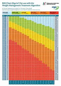 Bmi Fat Chart Weight Management Treatment Pdf Format E