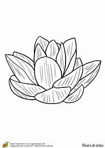 Dessin Fleurs De Lotus : coloriage feuilles fleur de lotus sur ~ Dode.kayakingforconservation.com Idées de Décoration