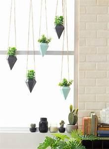 Hängende Pflanzen Für Draußen : fensterbank deko die farben der natur durch pflanzen ~ Sanjose-hotels-ca.com Haus und Dekorationen