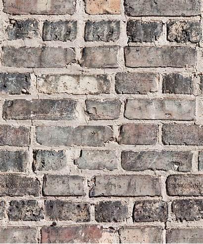 Brick Bricks Realistic Authentic Milton Wallpapers Samples