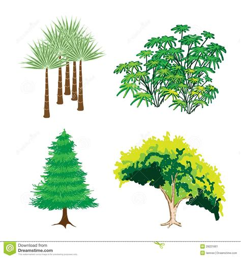 pictures of plants and trees an isometric collection of green trees and plants stock image image of environment drawn