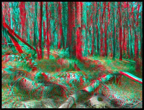 Image 3d 3d Randomised Pieces