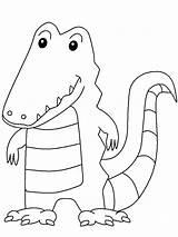 Crocodile Coloring Pages Animals Florida Animal sketch template