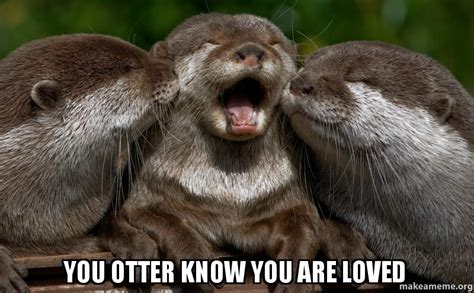 Otter Love Meme - otter hug memes