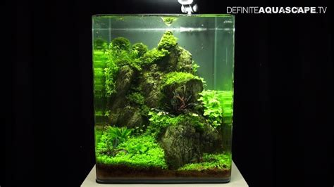 Aquascaping Tank by Aquascaping The Of The Planted Aquarium 2013 Nano