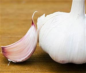 will garlic keep fleas away