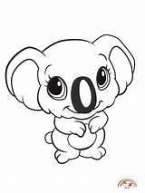 Coloring Animals Animal Zoo Koala Blogx sketch template