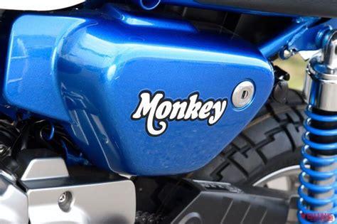 Honda Bikes 2020 by 2020 Honda Monkey 125 Motorcycle News New Color On The