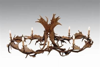 Chandelier Antler Fallow Rectangular Ceiling Lights Single